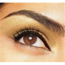 Eye Brow Wax & Tint